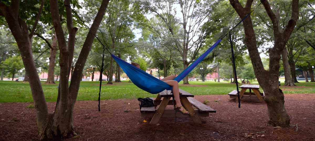Ole Miss School of Business - Hanging in the Grove